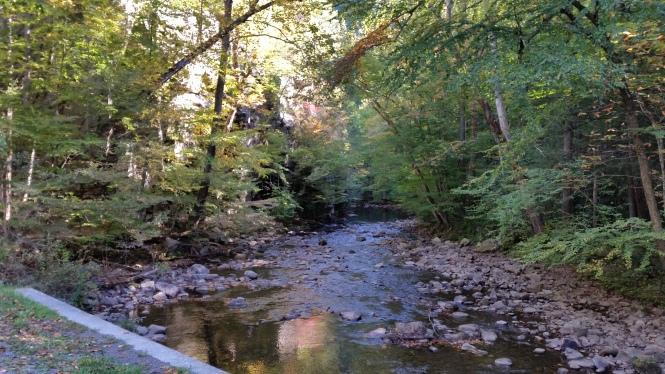 Beaverdam Creek