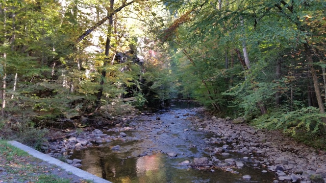 Beaverdam Creek