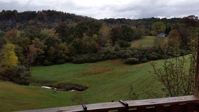 The bucolic view from the cabin deck