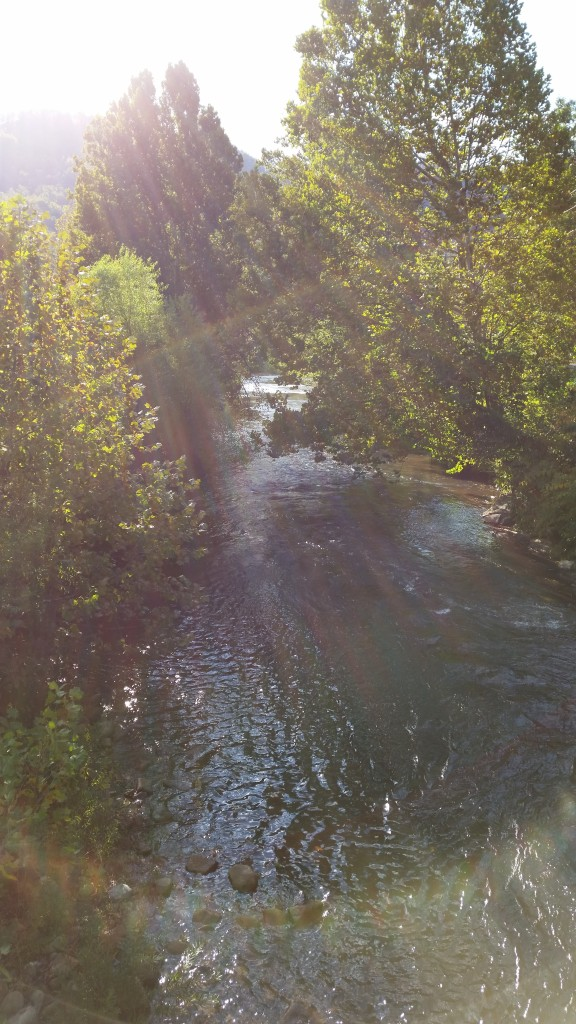 The Elk River glitters in the afternoon sun