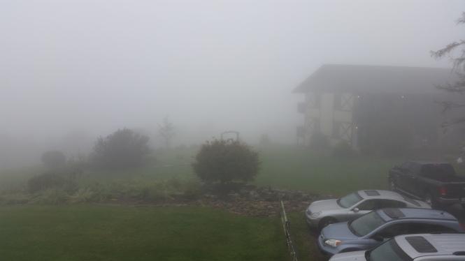 Day 9 foggy morning