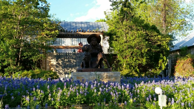 "On the way to dinner, ""Little Sure Shot"", Annie Oakley, and her dog were highlighted by the gorgeous bluebonnets"