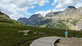 Alpine meadow is protected by boardwalks in sensitive areas
