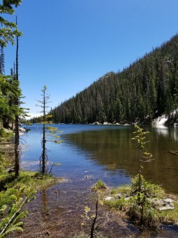 Looking east on Dream Lake