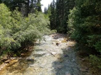 Milky Duck Creek